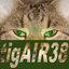 tigAIR38